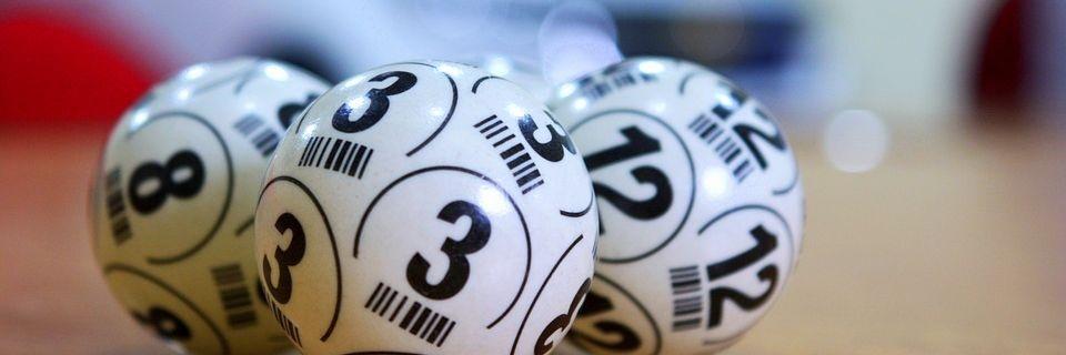 12 4 19 Nagaland Lottery Sambad Dear Vulture Evening Results for 12