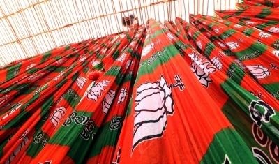 Himachal BJP dissident rejoins party