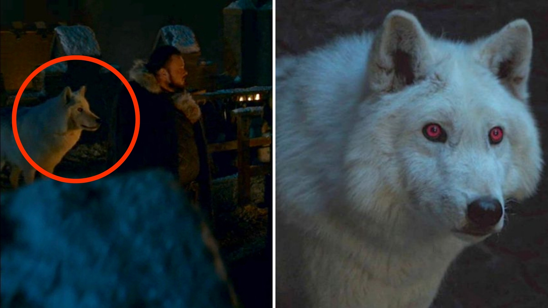 Game of Thrones Finally Gave us a Scene With Ghost. Well, Kind of