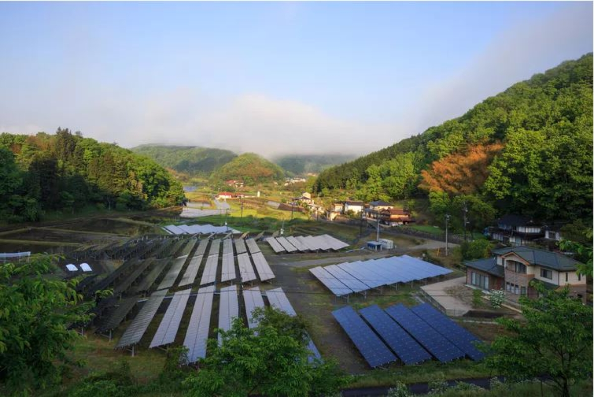Solar panels reflecting the early morning sun in rural Japan.