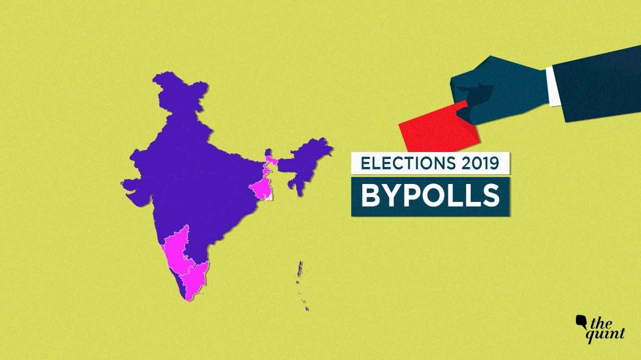 Assembly Bypolls: 77% Final Voter Turnout in TN, 75% in Panaji