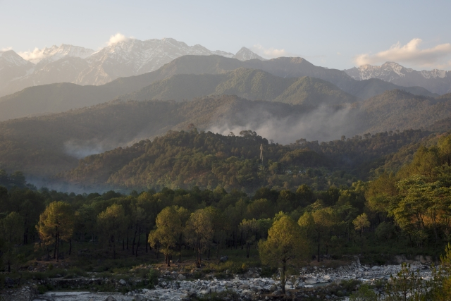 Smoke rises from a pine forest on the foothills of the Himalaya near Palampur, about 48 kilometers  south of Dharmsala.