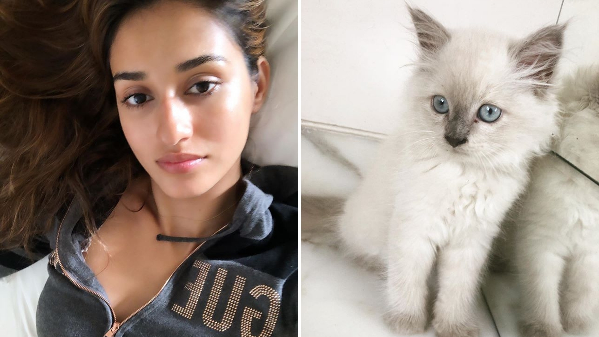 Disha Patani Welcomes New Family Member on Her Birthday