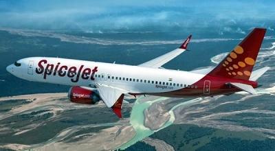 After tyre burst, SpiceJet aircraft makes safe landing in Jaipur