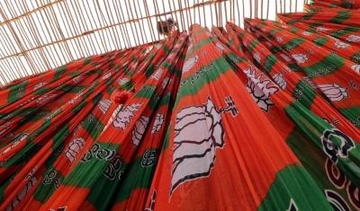 Former Andhra MP Kothapalli Geetha joins BJP