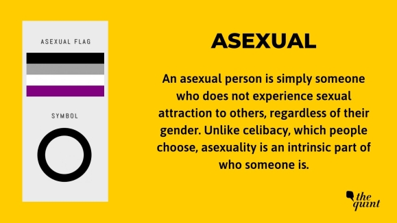 Important terminology related to the LGBTQ+ community.