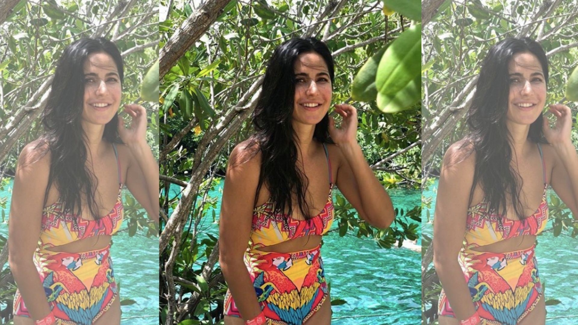 Katrina Kaif Says You Need Nerves of Steel to Survive In Bollywood