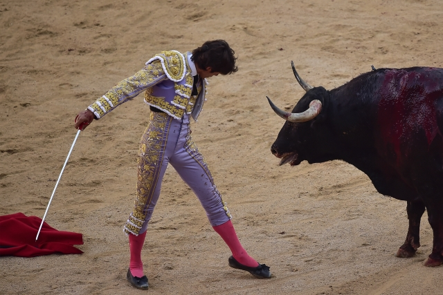 French bullfighter, Sebastin Castella, performs during bullfight at the San Fermin Festival in Pamplona.