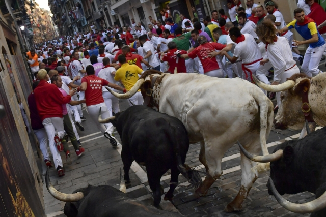 People running from the fighting bulls during the running of the bulls at the San Fermin Festival in Pamplona.