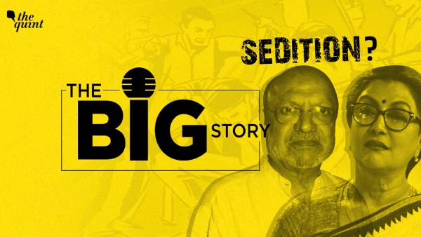 Is dissent seditious? If you disagree with your government, are you automatically committing sedition? That's what we're looking at in this edition of The Big Story.
