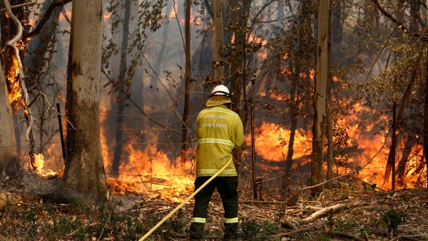 Australia's New South Wales Wildfires Destroys Over 200 Homes
