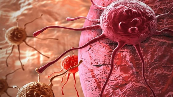 Nanomedicines could also have unintended and harmful side effects like accelerating cancer spread, says a study.