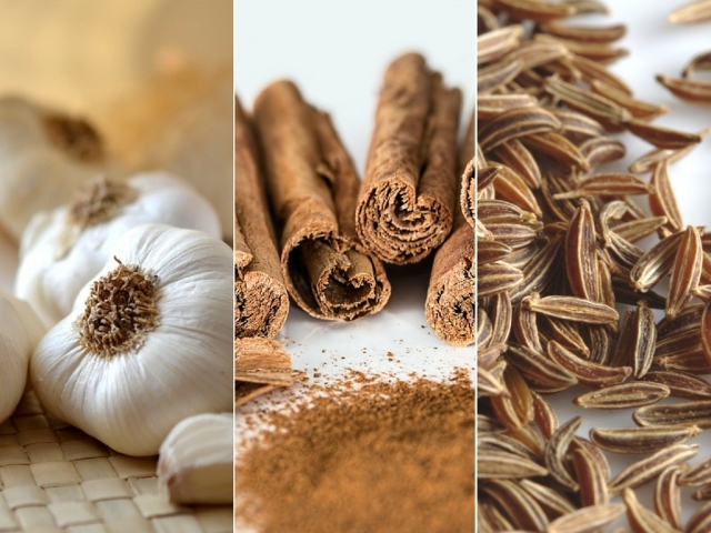 Cinnamon, cardamom and curcumin also offer benefits in terms of bile production.
