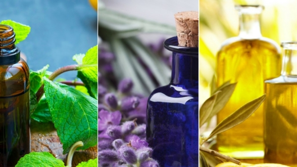 Use essential oils depending on the seasons.