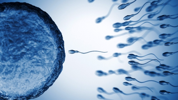 How is infertility related to age?  Take this FitQuiz to find out.