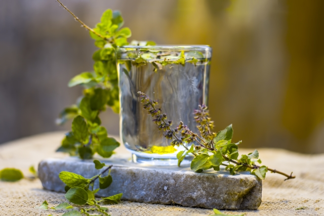 Drinking tulsi water is known to build up immunity levels and keep the flu away.