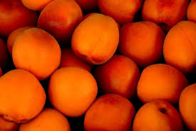 Stone fruits are rich in sugar content but are full of nutrients.