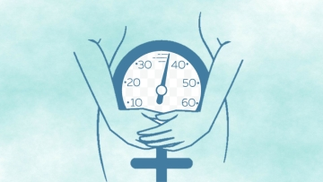 Menopause is accompanied by a decrease in muscle mass and aerobic fitness and an increase in fat mass.