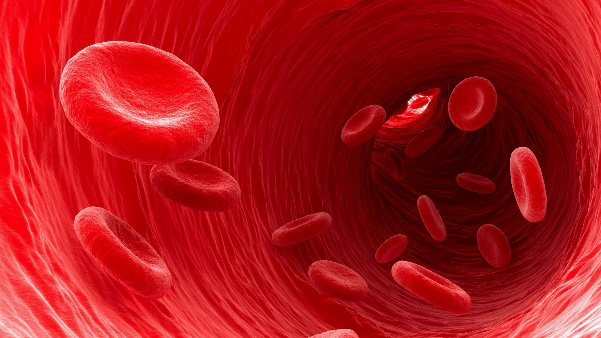 Blood Cells May Hold Key to 'Fountain of Youth', Say Scientists