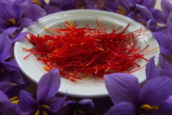 Saffron could be a promising herbal alternative for treating children with attention deficit hyperactivity disorder (ADHD), finds a pilot study.