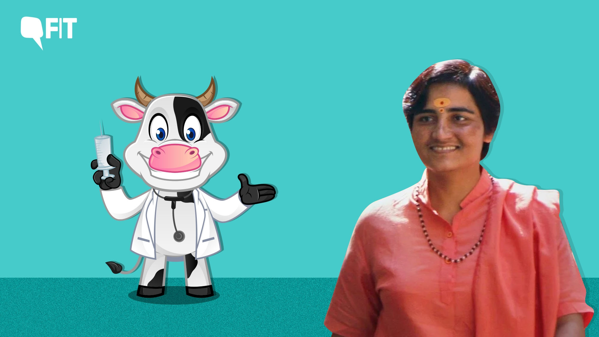 Sadhvi Pragya Says Cow Urine Cures Cancer. Here's a Fact Check