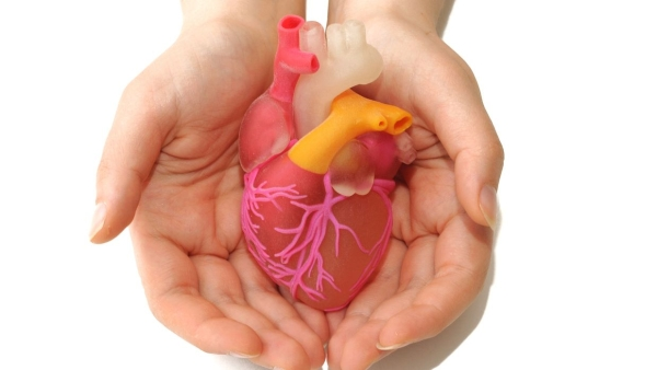 Scientists in Israel unveiled a 3D print of a heart with human tissue and vessels on 15 April.