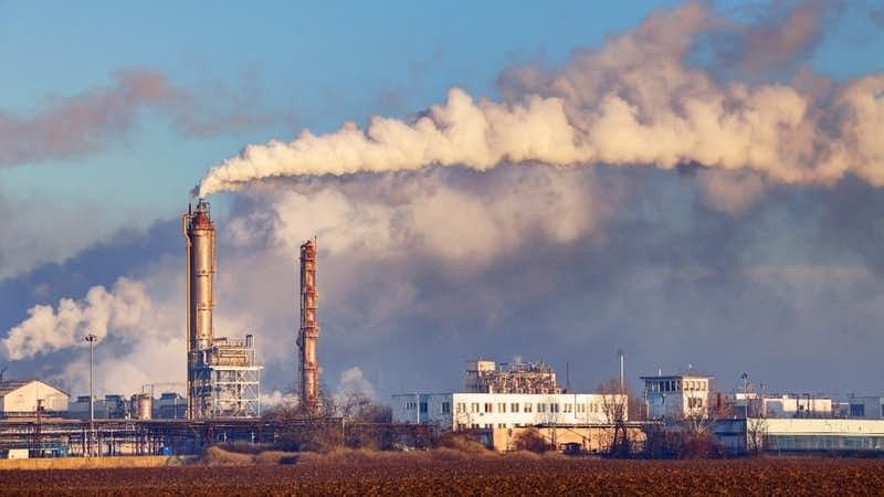 Air Pollution Harms Every Part of The Body, Finds A Global Review
