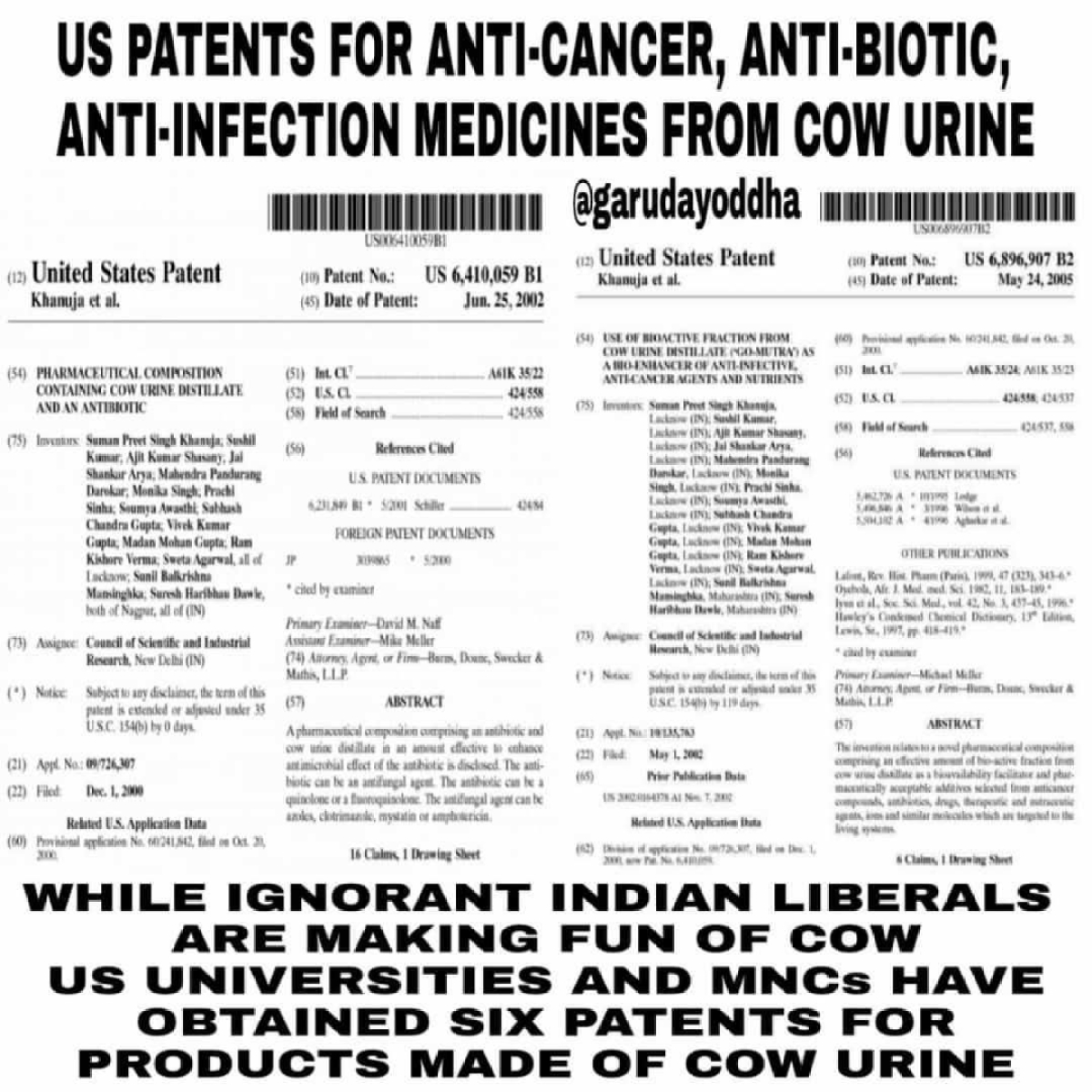 Medicines Containing Cow Urine: Fact Check on US Obtaining