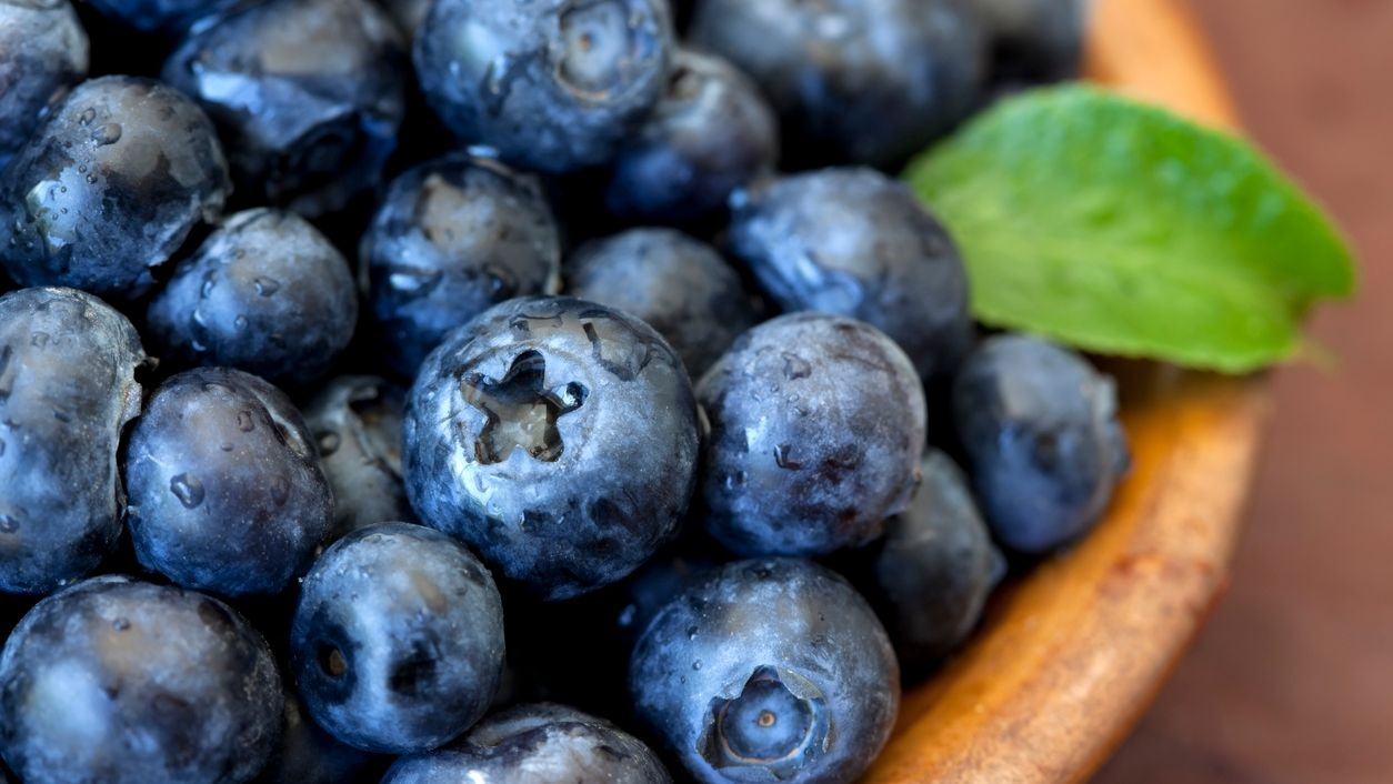 Blueberries Good for Your Heart, Finds a Study