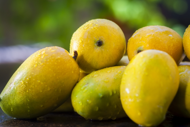 Mangoes contain phytochemicals that are responsible for faster bowel movement.