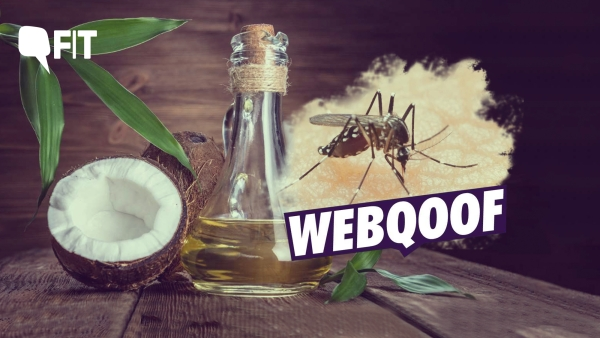 Coconut oil is hailed as a superfood but can it cure dengue?