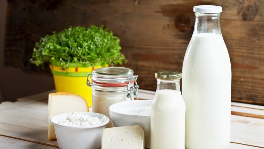 Protein, Dairy Consumption May Reduce Diabetes Risk, Finds a Study