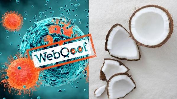 क्या सचमुच नारियल का पानी कैंसर कोशिकाओं को खत्म कर सकता है?