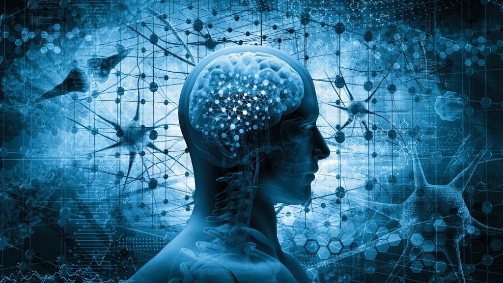 Revealed: Indians Have Smaller Brains