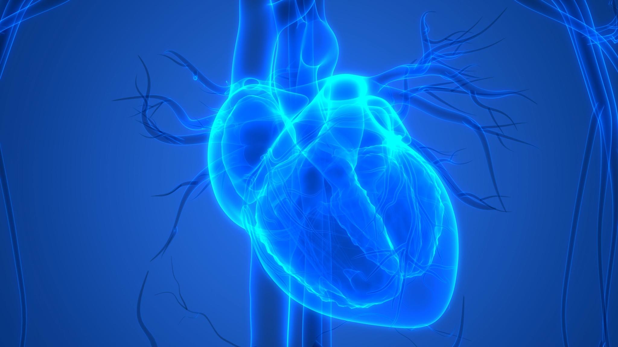 Sitting More May Raise Heart Disease Risk in Older Women