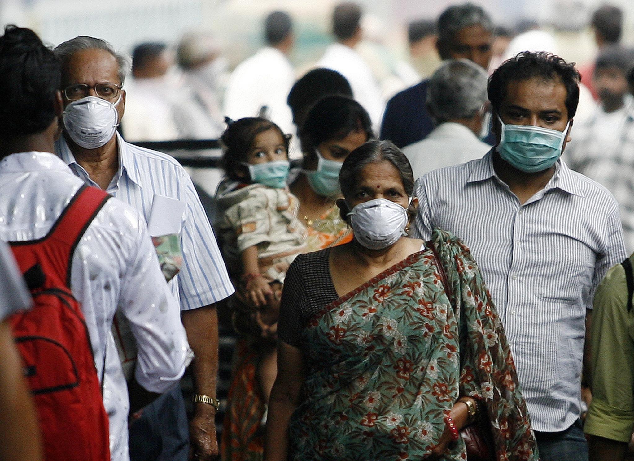 essay swine flu india
