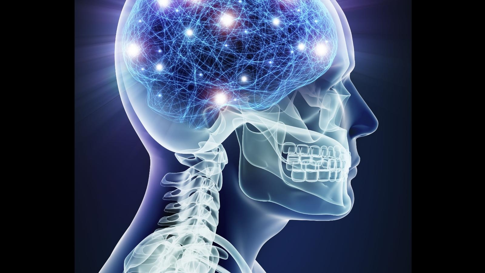 compare human brain and the computer essay Now it's easy to see obvious parallels between, say, human memory and computer memory but, instead, let's explore the comparison further by considering something less obvious, perception and pattern recognition, which is one of the human brain's most important functions.