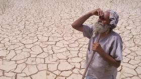 Reuters_farmers