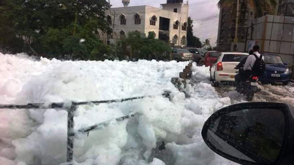 QBengaluru: NGT Asks Govt to Fund Bellandur Lake Clean-up & More