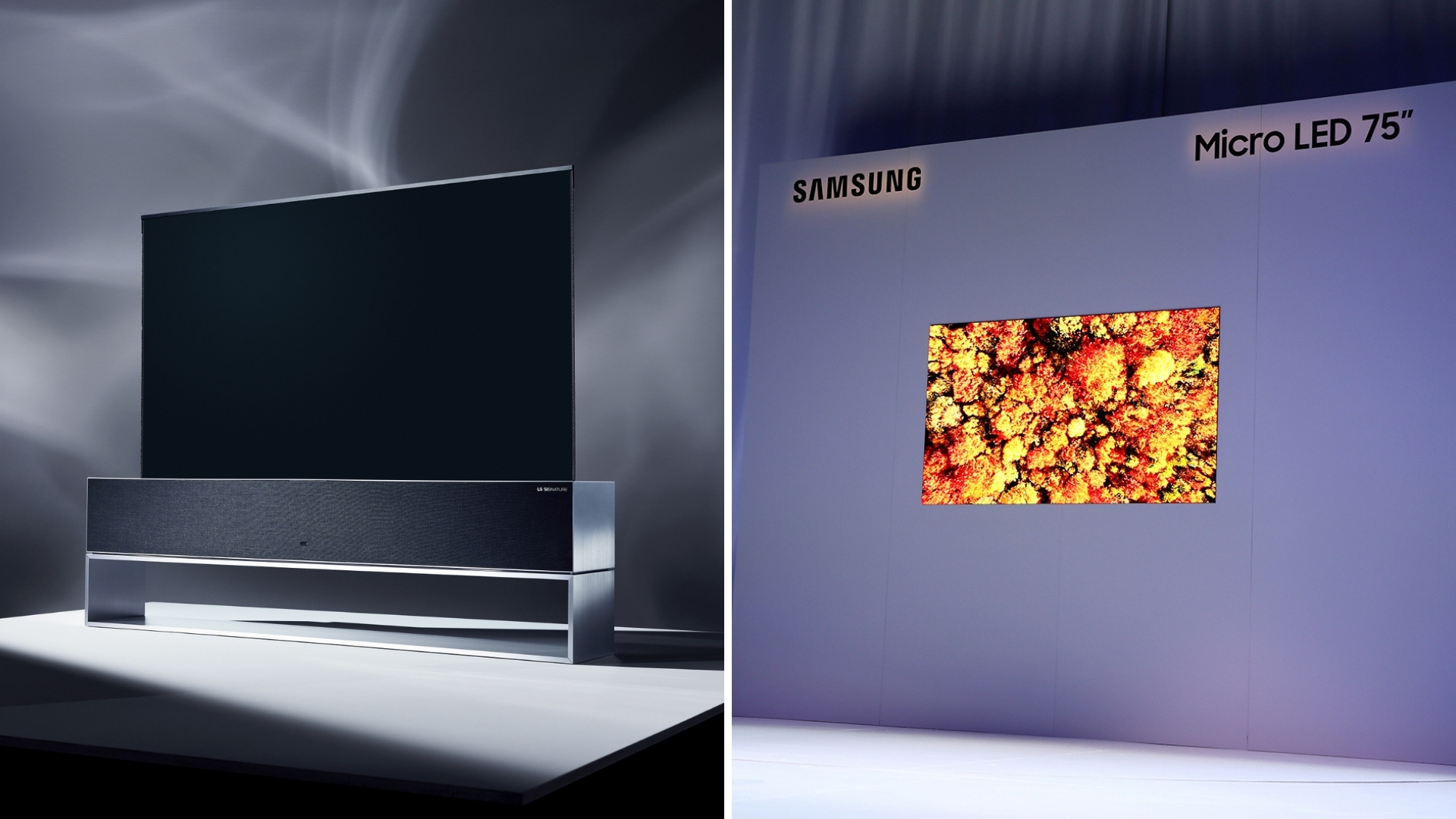 CES 2019: LG Rollable OLED TV Rivals Samsung's 75-inch MicroLED TV