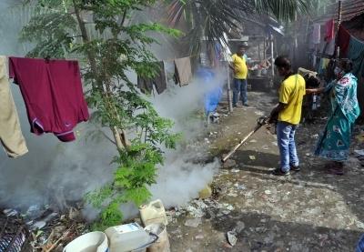 Dengue cases increase in Uttarakhand