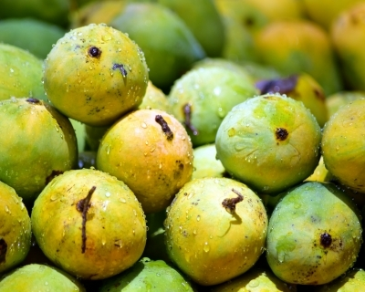 Indian worker at Dubai airport held for stealing mangoes