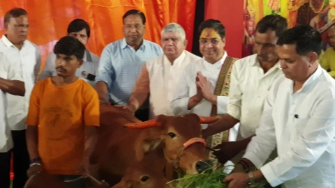 Cow hospital will be built in Khandwa