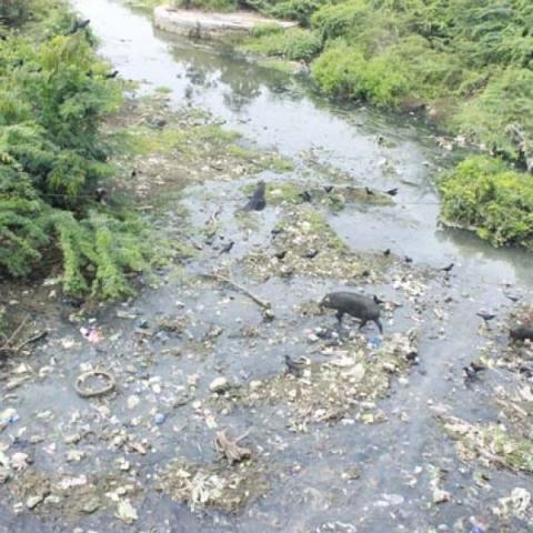 `சாக்கடையான நங்காஞ்சி ஆறு!' - சுத்தப்படுத்தக் கோரும் கரூர் மக்கள்