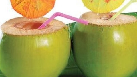 Tender Coconuts protect from summer heat
