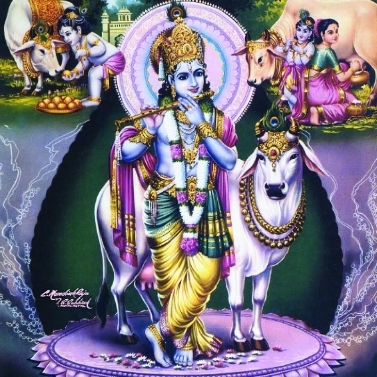 கிருஷ்ணர் விளையாடிய ஜல்லிக்கட்டு.. 7 காளைகளை அடக்கிய எழில் மாயோன்..! #Jallikattu
