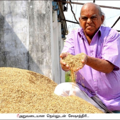 2 acres... 130 days... 1 lakh rupees profit..! Natural and sweet rice