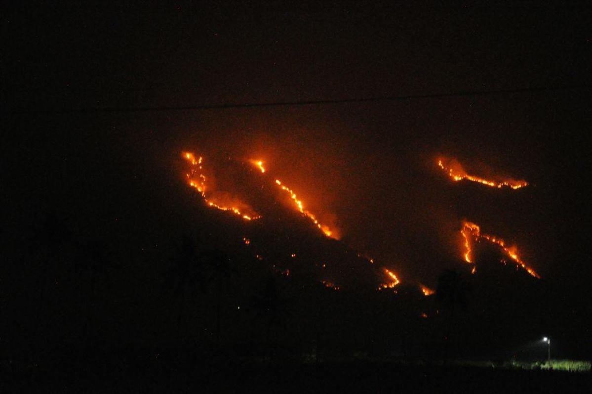 """""""நெருப்புக்கு நடுவுல மாட்டிக்கிட்டோம்... தயவு செஞ்சு காப்பாத்தும்மா..!"""" #KuranganiForestFire"""