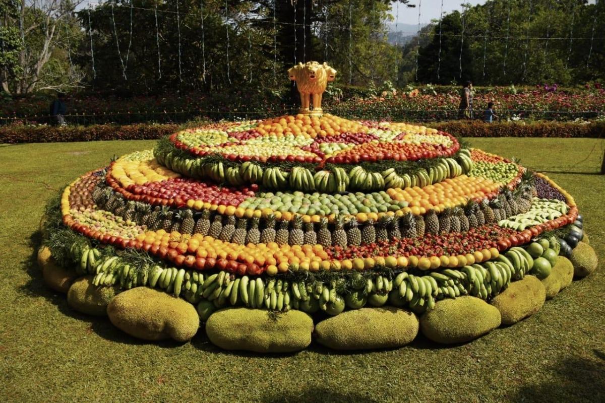 1.5 டன் பழங்கள்; 200 பழ வகைகள் - கோலாகலமாகத் தொடங்கியது குன்னூர் பழக் கண்காட்சி