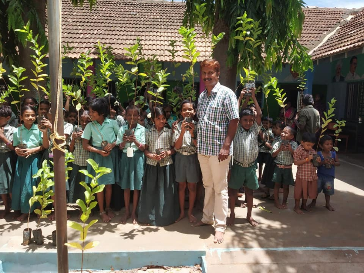 School students planting trees